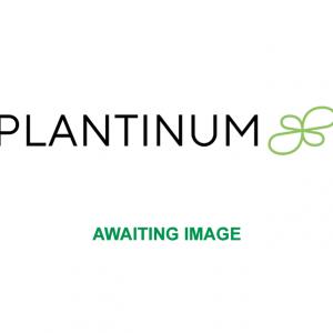 Plantinum CBD Products Awaiting Image